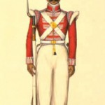A soldier of the Madras Native Infantry.