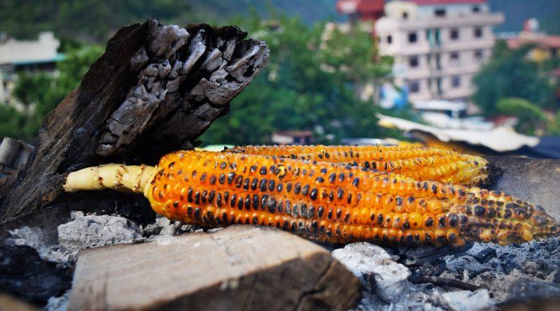 North Eastern and Uttarakhand Food: Explained!
