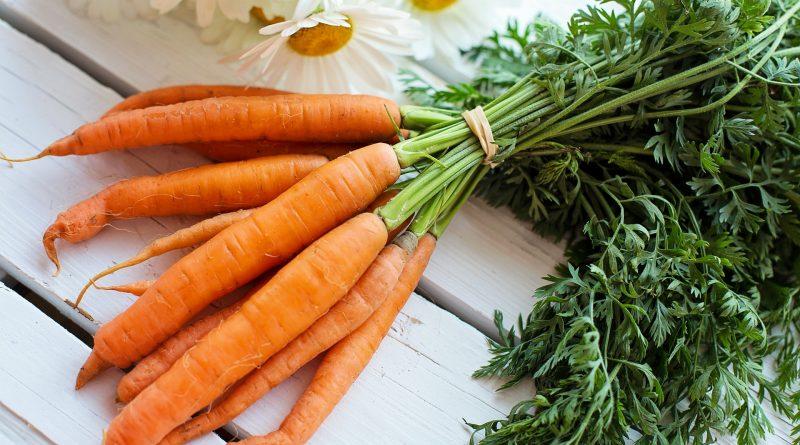 Fact Sheet: Vitamin A